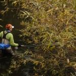 Steelhead fishing on the Klamath River