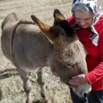 Uncommon Bond - Finding Friendship on the Farm