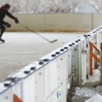 022814_FeatureIceHockeyDog
