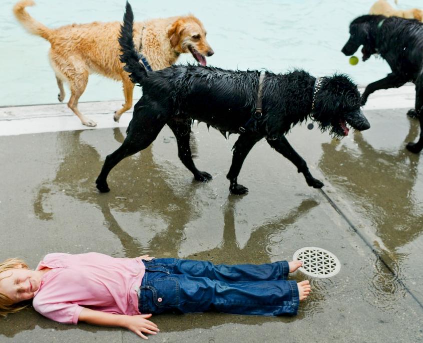 Bozeman_Photographer_Bogert_Swimming_Pool_Dogs
